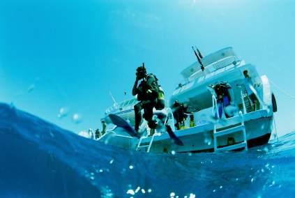 Faszinierende Tauchreviere weltweit laden zum Tauchen und zur Unterwasser-Fotografie ein
