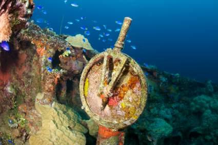 Das Wrack der Fujikawa Maru in der Chuuk Lagoon ist eines der Highlights dieses Tauchreviers