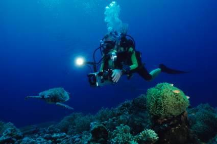 Mit vielen Unterwasserkameras kann man nicht nur Fotos machen, sondern auch filmen.
